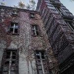Beelitz-Heilstätten: Rückeroberung durch die Natur