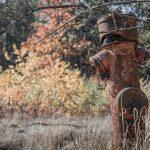 Beelitz-Heilstätten: Details