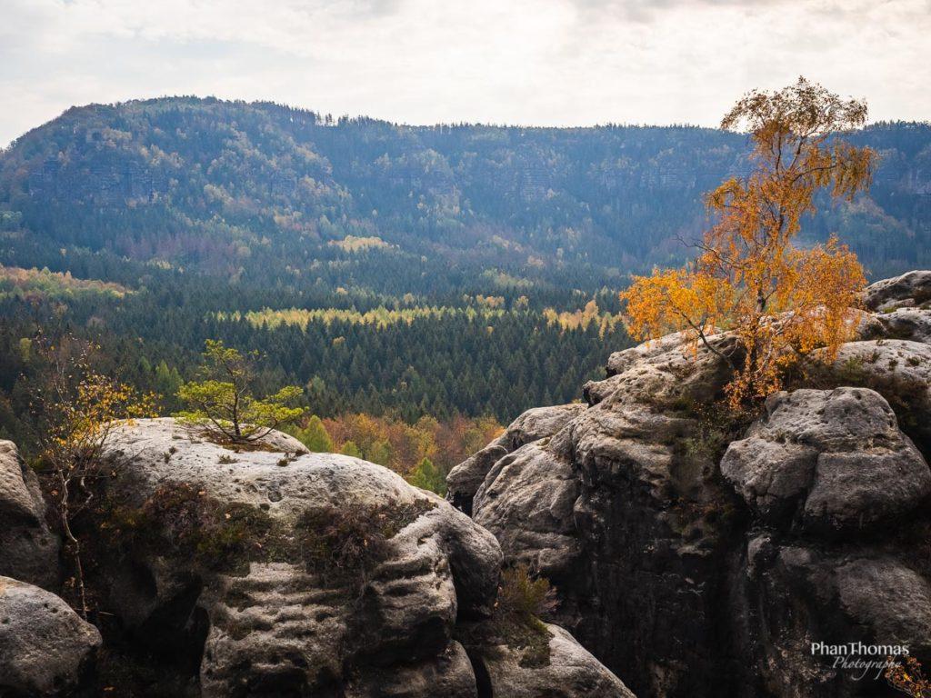 Lichtenhainer Wasserfall: Bergiges Land